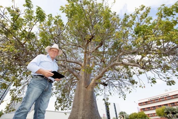 Darwin arborist Bill Sullivan